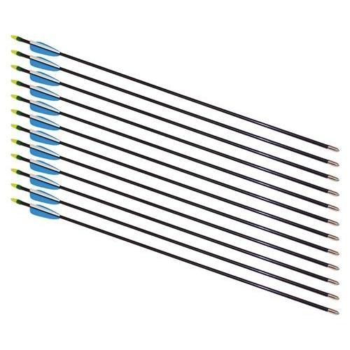 """30"""" Fiberglass Arrows - 12 Arrows"""