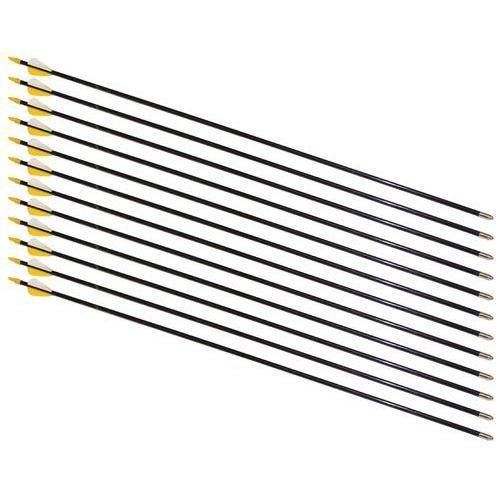 "28"" Safety Glass Arrows - 12 Arrows"