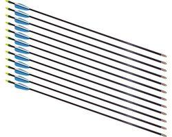"""26"""" Fiberglass Arrows - 12 Arrows"""