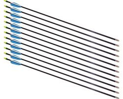 """28"""" Fiberglass Arrows - 12 Arrows"""