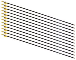 "30"" Safety Glass Arrows - 12 Arrows"