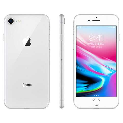 Apple iPhone 8 12MP+7MP Camera 4.7-Inch Screen Hexa-core IOS 3D Touch ID LTE Fingerprint Phone with Euro Plug Adapter Silver_256GB