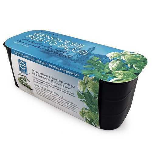 Genovese Pesto Plus Italian All-Natural Window Gardening Kit - GMO-free - Genovese Compact Basil, Pistou Basil, Italian Dark Green Parsley
