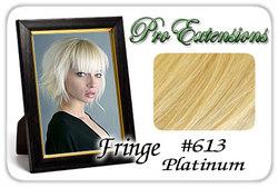 #613 Platinum Pro  Fringe Clip In Bangs