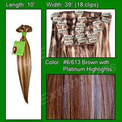#6/613 Chestnut Brown with Platinum Highlights - 10 inch