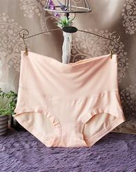Womens Comfort High Waist Bamboo Fiber Brief Panty Apricot