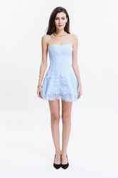 Light Blue Sexy Strapless Lace Tight Corsetdress
