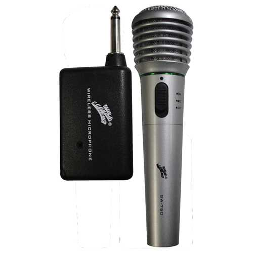 MICROPHONE WIRELESS NIPPON WITH RECEIVER