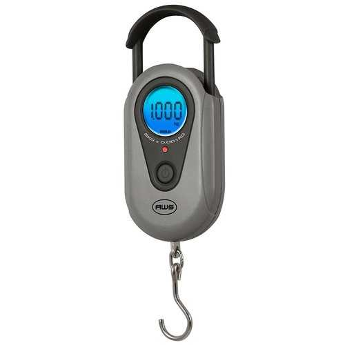 American Weigh Scale Sr-1kg Gray Digital Hanging Scale Gray 1000g X 1 G