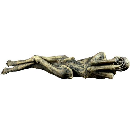 ANCIENT MUMMY PROP