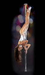 Fetish Fantasy Series Light-Up Disco Dance Pole