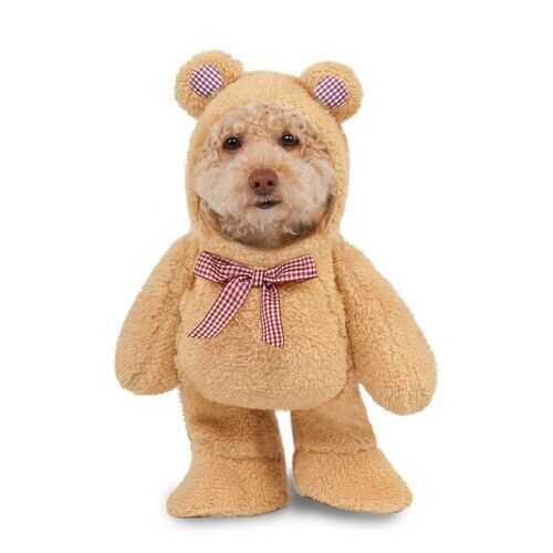 Walking Teddy Bear Pet Costume Meduim