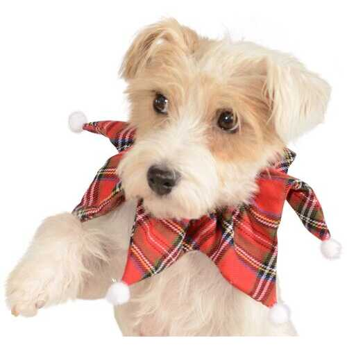 Dog Plaid Collar Medium-Large