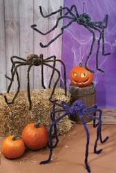 Fun World 90 Inches Posable Spider