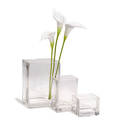 Square Glass Vase Clear 3 X 4 X 3Inches