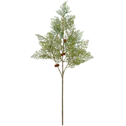 Pine Spray Cypress 39 Inches