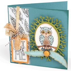 Sizzix Fox Tales Collection Clear Acrylic Stamps Owl And Feathers