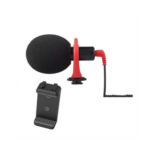 Directional Video Microphone