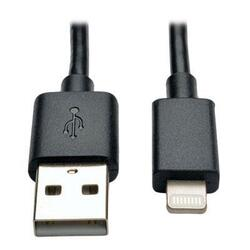"10"" Lightning USB Cable Blk"