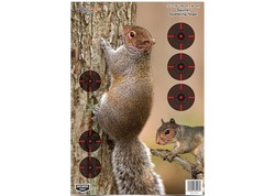 "Birchwood Casey Pregame Squirrel Target, 12""x18"", 8ct"