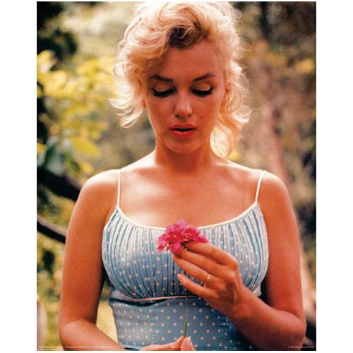*Marilyn Flower