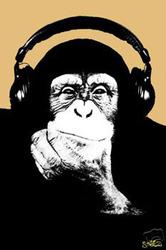 Headphone Monkey