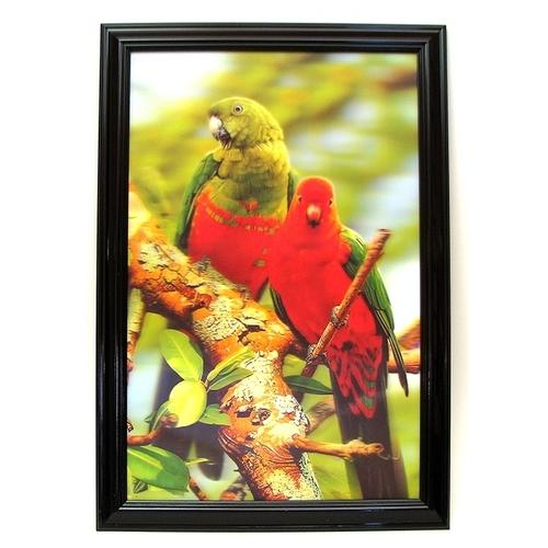 Parrot 3-D Picture REDUCED