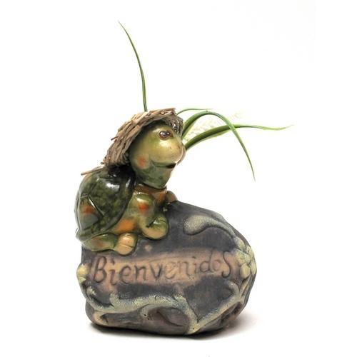 Pottery Turtle Bienvenidos