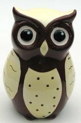 Ceramic Owl Bank