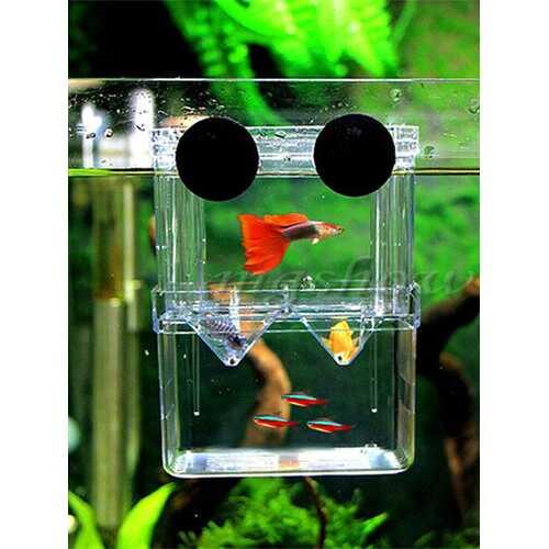 Aquarium Young Fish Incubator Isolation Box Breeding Hatchery Breeder Tank