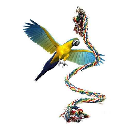 Pet Parrot Chew Rope Budgie Bell Bird Perch Coil