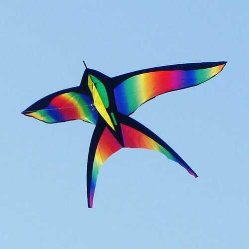 68Inch Swallow Kite Bird Kites Single Line Outdoor Fun Sports Toys Delta Kids Beach Toys