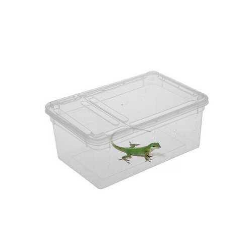 Plastic Plastic Insect Reptile Feeding Case