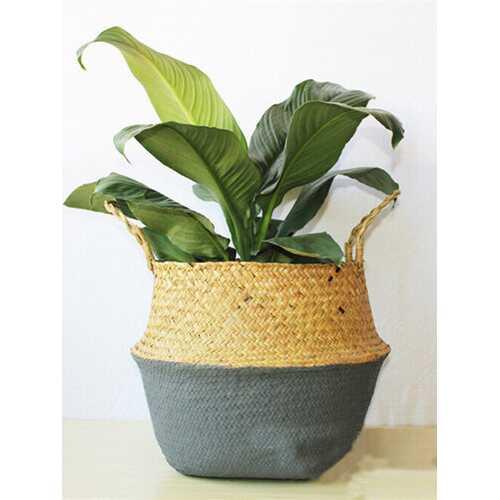 Flower Basket Storage Holder Plant