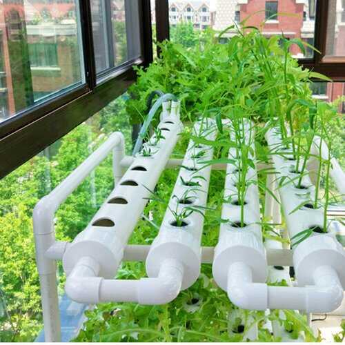 6 Holes Hydroponic Site Grow Kit Flow DWC Planting System