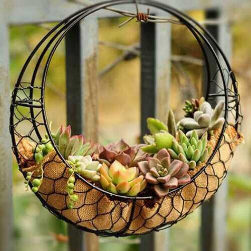 Retro Iron Succulent Pot