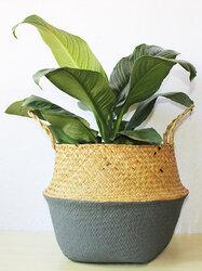 Seagrass Belly Storage Basket