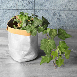 Kraft Paper Garden Bag