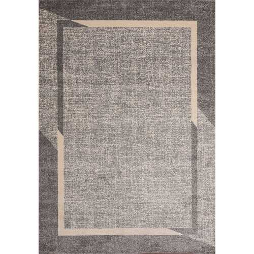 Fine Sleek Gray Beige Area Rug 3 ft. by 5 ft.