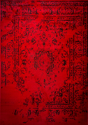 Jaime Red Area Rug 5 ft. by 7 ft.