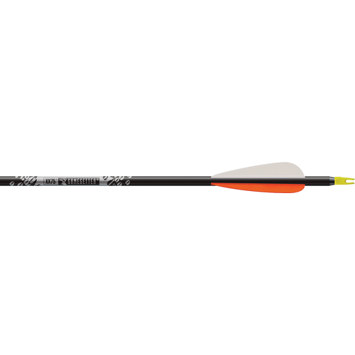 "Gamegetter 500 Arrows w/4"" Vanes & Insert Loose"