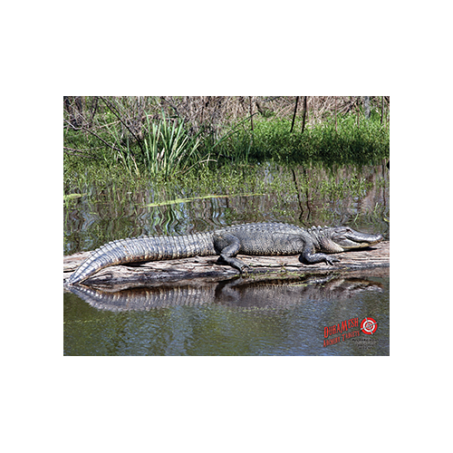 Duramesh Archery Target Alligator 25 in.x 32 in.