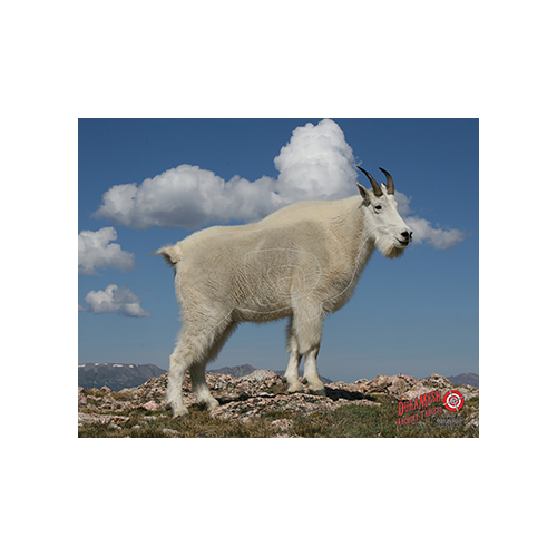 Duramesh Archery Target Mountain Goat 25 in.x 32 in.