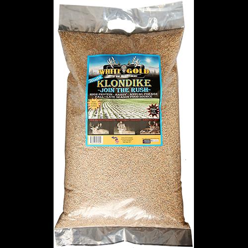 White Gold Winter Klondike Seed 25 lbs.