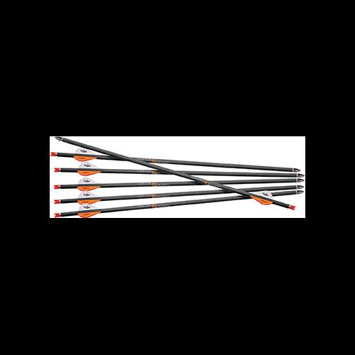 CenterPoint CP 400 Arrows 6 pk.