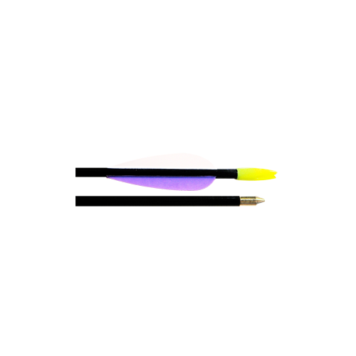 "Fiberglass Target Arrows 28"""