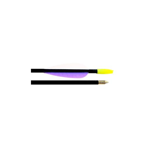 "Fiberglass Target Arrows 30"""