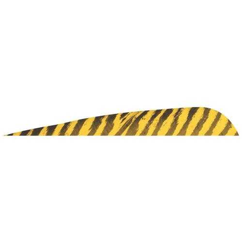 Gateway Barred Feathers Yellow 5 in. RW 50 pk.