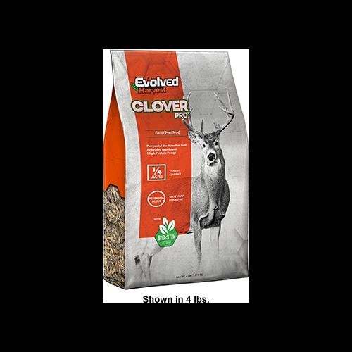 Evolved Clover Seed 2 lb.