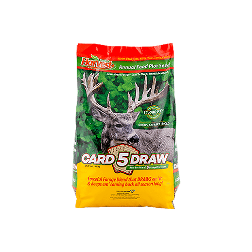 Evolved 5 Card Draw Seed 10lb